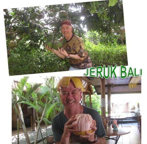 foto 4 jeruk Bali