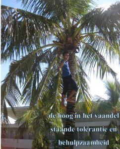 Bali weblog 7